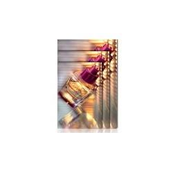 PREMIUM GLOSSY PHOTO PAPER(170) IN ROTOLI DA 152 4CM X 30, 5M