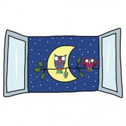ADESIVI MURALI REMOVIBILI - NIGHT VIEW - SIZE L 48x68 WALLSKIN