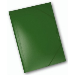 40563 CARPETTA 3L PLASTICA C/ELAST. 245X320 VERDE