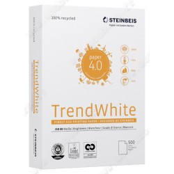RS.500FG A3 RICICLATA 80%P.BIANCO STEINBEISS TREND